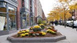 newbury-street-boston